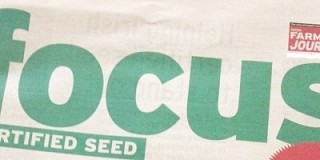 Focus on Certified Seed in niche markets